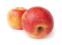 Twee appelen Stock Fotografie