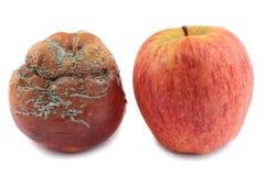 Twee appelen Stock Foto