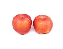 Twee appelen Royalty-vrije Stock Foto
