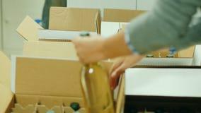 Twee arbeiders in de wijnmakerij gezette flessen wijn in dozen Het voorbereidingen treffen voor verzending aan consumenten stock footage