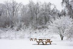 Twee Banken van de Picknick in Sneeuw royalty-vrije stock afbeeldingen