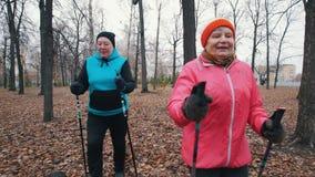 Twee bejaarden begint op stokken te lopen van het noordse lopen Het gaan op camera stock footage