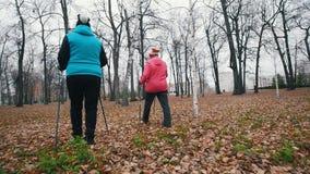 Twee bejaarden die op stokken van het noordse lopen lopen stock footage