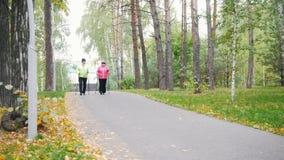 Twee bejaarden doen het Skandinavische lopen in het park stock footage