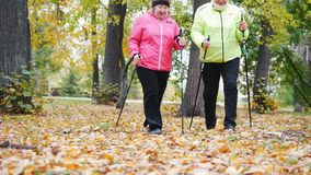 Twee bejaarden doen het Skandinavische lopen in het park Mening van de grond stock video