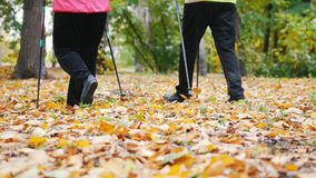 Twee bejaarden doen het Skandinavische lopen in het park voeten stock videobeelden