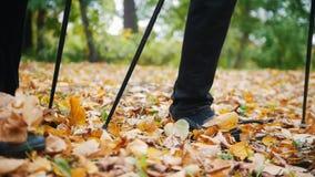 Twee bejaarden doen het Skandinavische lopen in het park voeten De herfst stock footage