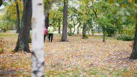 Twee bejaarden doen het Skandinavische lopen in het park Zonsondergang in het Park stock videobeelden