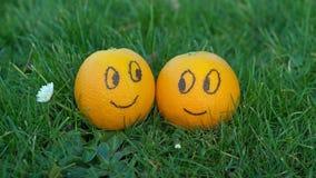 Twee bekoorde sinaasappelen royalty-vrije stock foto's