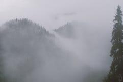 Twee bergpieken met bomen in de mist Royalty-vrije Stock Foto's
