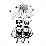 Twee bijen nemen schuilplaats onder een madeliefje Stock Afbeelding