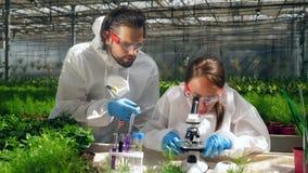 Twee biologen houden een onderzoek met een microscoop stock footage