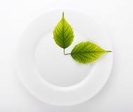 Twee bladeren in een ceramische die schotel op wit wordt geïsoleerd Stock Afbeeldingen