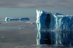 Twee blauwe Antarctische ijsbergen Stock Foto