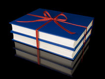Twee blauwe boeken Stock Afbeeldingen