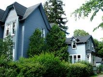 Twee blauwe huizen en vegetatie Royalty-vrije Stock Fotografie