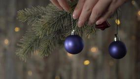 Twee blauwe Kerstmisbal en nette takken stock footage