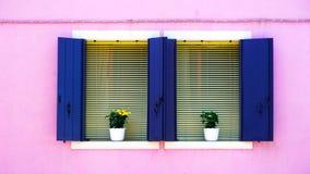 Twee blauwe Vensters op roze kleurenmuur Royalty-vrije Stock Foto's