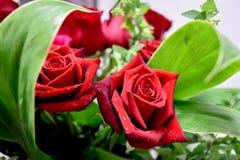 Twee bloeit de rode rozendecoratie boeket Stock Afbeeldingen