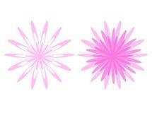 Twee bloemen Royalty-vrije Stock Foto