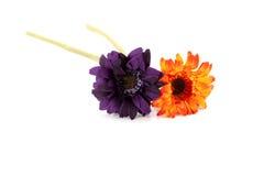 Twee bloemen Stock Foto's