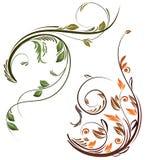 Twee bloemenelementen Royalty-vrije Stock Afbeeldingen