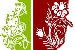 Twee bloemenontwerpelementen Stock Afbeeldingen