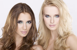 Twee blond en donkerbruine meisjesvrienden - Royalty-vrije Stock Afbeeldingen