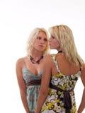 Twee blonde zusters in de zomerkleding stock foto