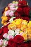 Twee boeketten van rozen Royalty-vrije Stock Foto