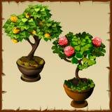 Twee bomenbonsai met muntstukken en bloemen stock illustratie
