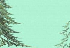Twee bont-bomen op een groene achtergrond Royalty-vrije Stock Foto