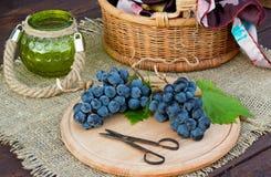 Twee bossen van blauwe druiven Stock Fotografie