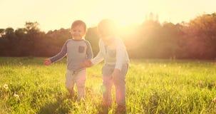 Twee broers lopen op het gebied in de zomer bij gelukkig en de vrolijke handen van de zonsondergangholding stock videobeelden