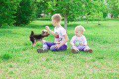 Twee broers spelen met een hond en zeepbels in het park Royalty-vrije Stock Afbeelding