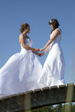 Twee bruiden in witte kleding stellen op houten brug in bos op s Stock Afbeeldingen
