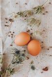 Twee Bruine Eieren Stock Fotografie