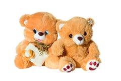 Twee bruine teddyberen royalty-vrije stock foto