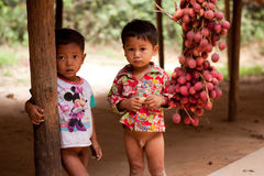 Twee Cambodjaanse Jonge geitjes Stock Fotografie