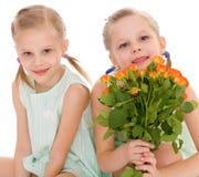 Twee charmante meisjes Royalty-vrije Stock Foto's