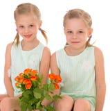 Twee charmante meisjes Royalty-vrije Stock Foto