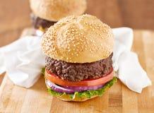 Twee cheeseburgers in natuurlijk licht. Royalty-vrije Stock Foto's