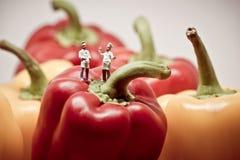 Twee chef-koks die over groene paprika's debatteren Grote details! Royalty-vrije Stock Afbeeldingen