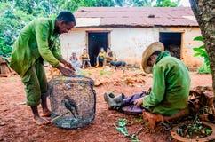 Twee Cubaanse boeren op hun onderbrekingstijd Mayabeque, Cuba stock foto