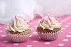 Twee cupcakes Royalty-vrije Stock Foto's