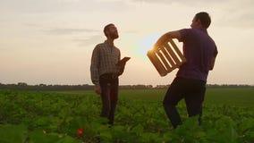 Twee de schokhanden van zakenmanlandbouwers met elkaar stevig Zij spreken op het gebied tegen een mooie zonsondergang, gebruiken  stock footage
