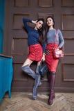 Twee de sexy mooie jonge elegante luxe van het vrouwen donkerbruine haar Royalty-vrije Stock Foto