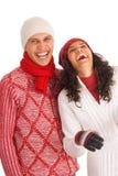 Twee de wintervrienden Stock Afbeelding
