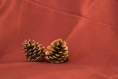 Twee denneappels op het rood Royalty-vrije Stock Fotografie