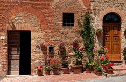 Twee deuren stock afbeelding